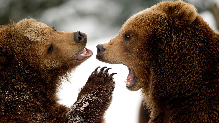 Opinion: The Next Bear Market In Stocks Will Spark A Retirement Crisis