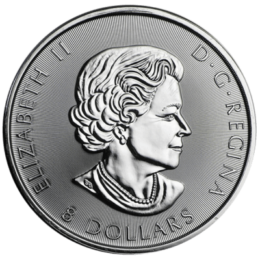silver-gyrfalcon-back_1