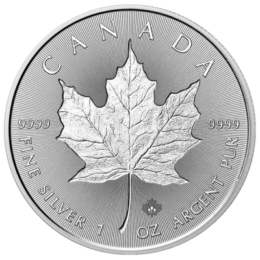 silver-maple-leaf-front