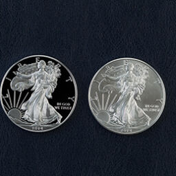 Silver American Eagle Bullion and Proof Coins